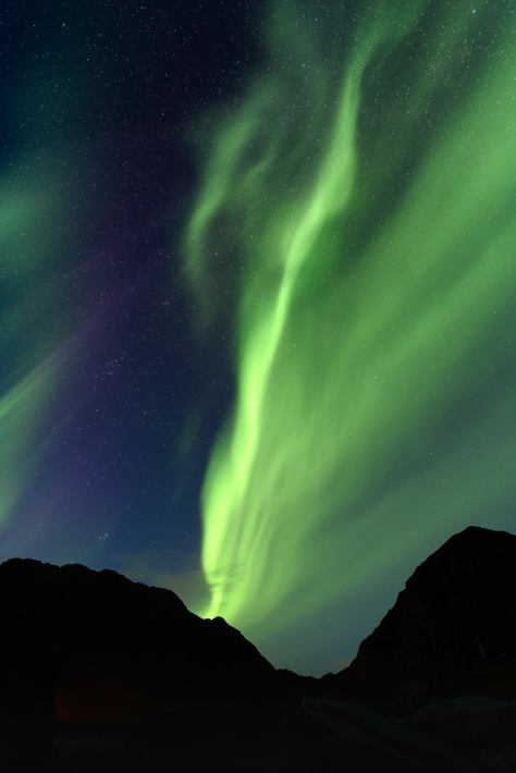 Northern lights about a mountain in Lofoten islands, Norway